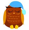 sleeping owl on white background vector image vector image