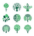 tree logo green eco symbols nature wood tree vector image vector image