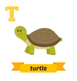 Turtle T letter Cute children animal alphabet in vector image vector image