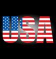 usa flag text icon - graphics vector image