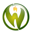circle green letter w with dental sign concept vector image vector image