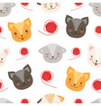 cute heads cats seamless pattern pet animals vector image
