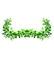 sprigs with green leaves design element vector image vector image