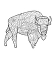 Bison animal coloring book for adults vector image