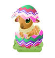 easter bunny in the egg cartoon vector image vector image