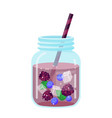 fruit water in a glass jar icon vector image vector image