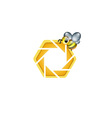 photography logo with cute honeybee vector image vector image