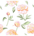 pink tender peony seamless pattern vector image