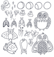 set with owls bats fireflies and moths vector image vector image