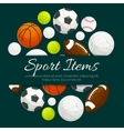Sport items and balls label emblem vector image vector image