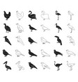 types of birds blackoutline icons in set vector image vector image