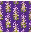 Violet primroses pattern vector image