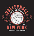 volleyball new york print with ball and wings vector image