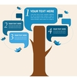 infographic design speech bubble tree with birds vector image