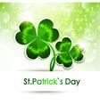 Patricks Day vector image