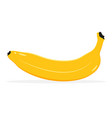 banana fruit icon isolated fruits and vegetables vector image vector image