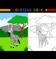 cartoon zebra coloring book vector image vector image