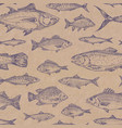hand drawn fish seamless background pattern vector image