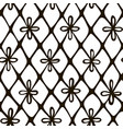 lace hand drawn seamless pattern vector image
