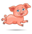 little cute pink piggy vector image