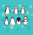 set with cute penguins character vector image vector image