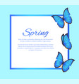 spring greeting card blue butterflies photo frame vector image
