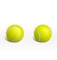 tennis balls on white background realistic vector image