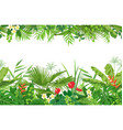 tropical plants seamless border vector image vector image