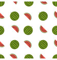 watermelon pattern on white background vector image vector image