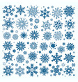 christmas set of light blue snowflakes and stars vector image