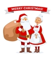 Santa and Missis Claus cartoot family vector image