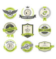 badges and labels collection vector image vector image