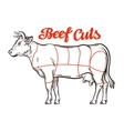 beef chart meat cuts or butcher shop vector image vector image