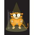 cats prisoners were captured vector image