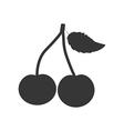 Cherry Fruit Icon vector image vector image