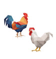 chicken rooster with polygonal triangle style vector image