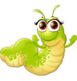 cute insect caterpillar vector image