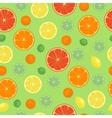Fruits orange seamless patterns vector image vector image