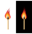 object fire match vector image