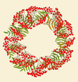 Red rowan wreath vector image vector image