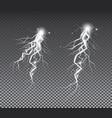 set lightnings thunder storm and lightnings vector image