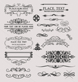 Set of calligraphic element vector image vector image