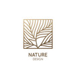 square abstract tree emblem linear feather emblem vector image vector image