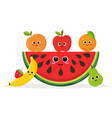 set of fruits and watermelon vector image