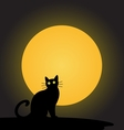 black cat with the moonhalloween background vector image