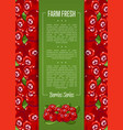 farm fresh berry banner with juicy cranberry vector image vector image