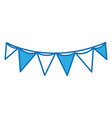 flag party celebration decoration design vector image vector image
