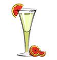 popular martini cocktail vector image