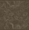 seamless pattern topographic map background vector image