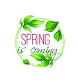 spring time icon of green leaf vector image vector image